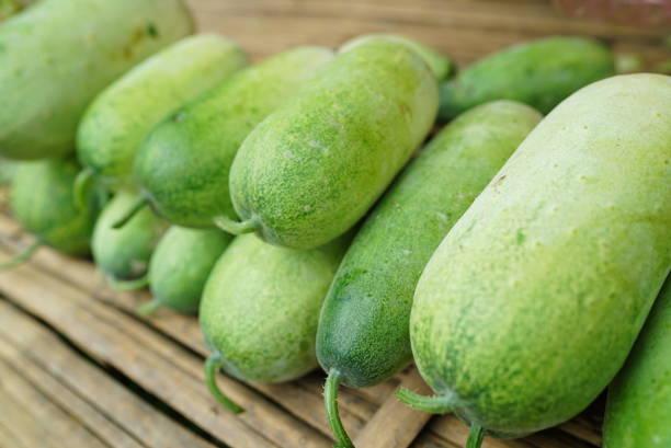 Winter Melons